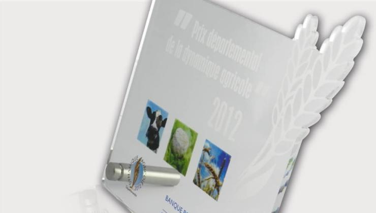 Trophée pour remise de prix fabriqué en PMMA transparent imprimé et gravé